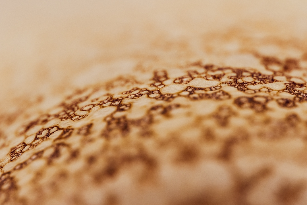 Dried coffee bubbles_by_sylphire