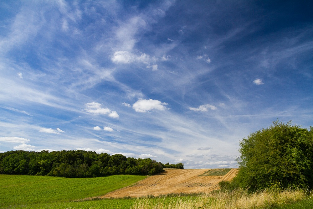 Winds-of-the-countryside_by_sylphire