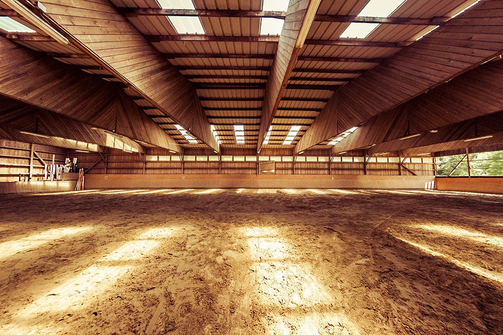 Manege-Equestre_by_sylphire