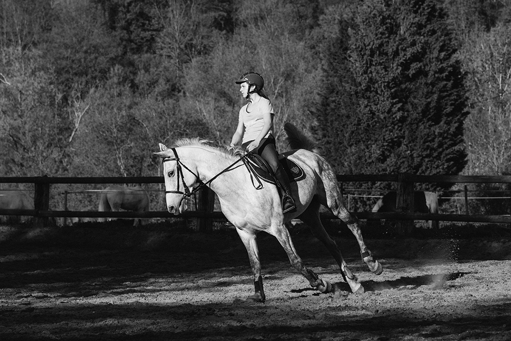 Emma - Reprise Dressage