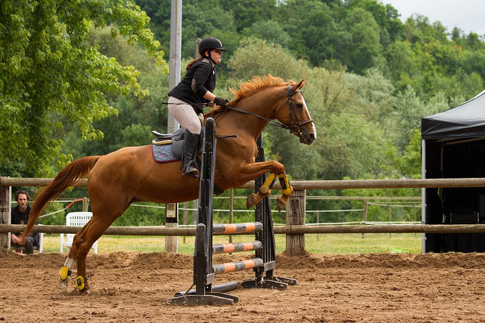 Amélie - La Fabionneuse - Concours Equestre