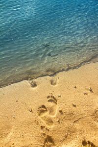Beyond the sand